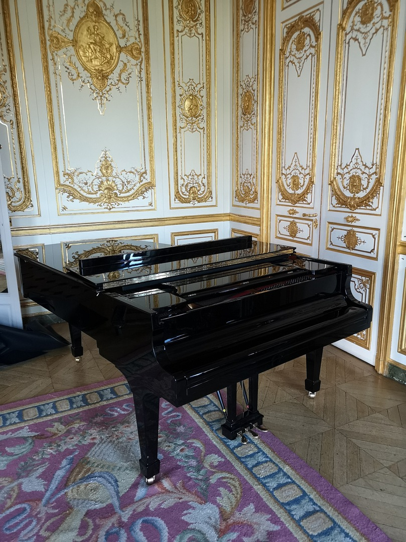 dldem transport de piano a paris et en aquitaine aux bouscat. Black Bedroom Furniture Sets. Home Design Ideas